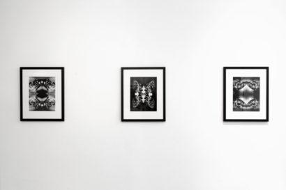 The-Untitled-Space-Indira-Cesarine-Vita-et-Mors-Exhibit-003.jpg