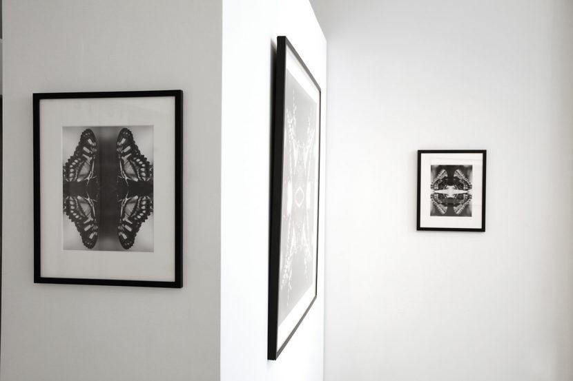 The-Untitled-Space-Indira-Cesarine-Vita-et-Mors-Exhibit-004-LR.jpg