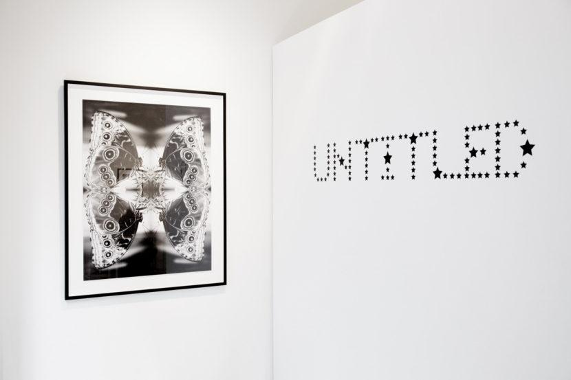 The-Untitled-Space-Indira-Cesarine-Vita-et-Mors-Exhibit-006-LR.jpg