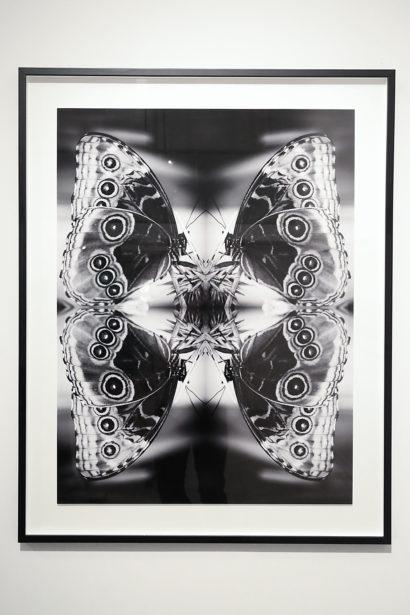 The-Untitled-Space-Indira-Cesarine-Vita-et-Mors-Exhibit-008.jpg