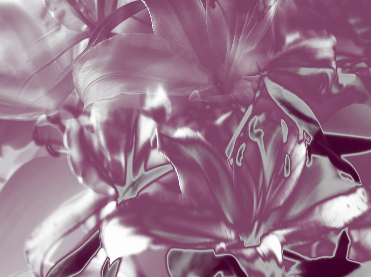 Indira-Cesarine-22The-Labyrinth-Pink-Silver-Lillies22..jpg
