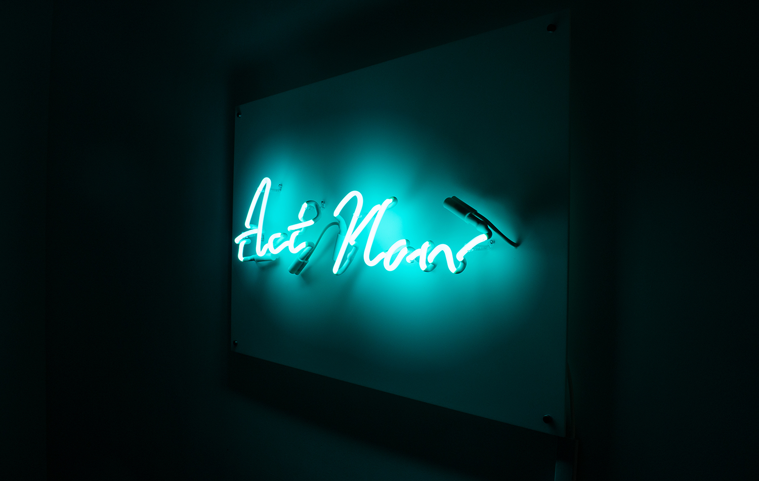 Indira-Cesarine-Act-Now-Neon-Sculpture-Edition-2-2020-5.jpg